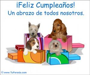 Animales en tarjetas de cumpleaños
