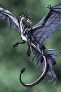 imagen de dragon