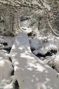 imagen de nieve