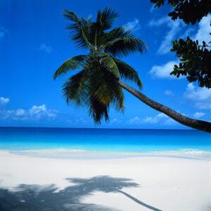 imagen de playa