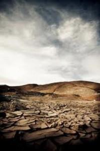imagen del desierto