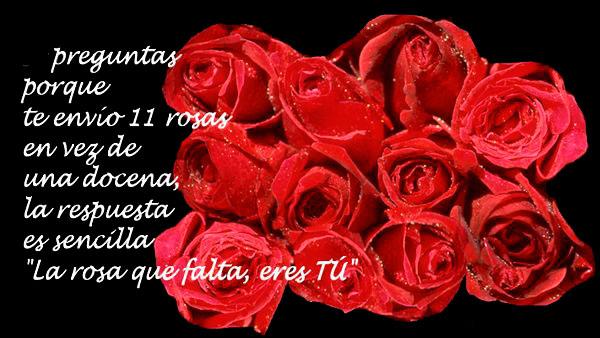 la rosa que falta eres tu tdsam
