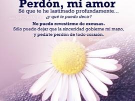 perdon_mi_amor-t2