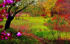 Fotos de paisajes hermosos