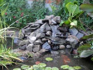 imágenes de estanque de peces en el jardín