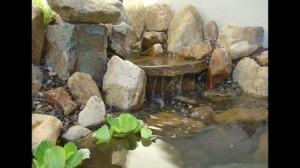 fotos de estanque de peces formado con piedras