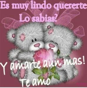 ositos-de-amor-e1375405578826