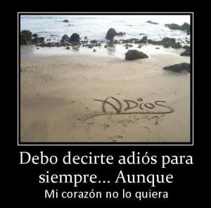 decir-adios-e1372699923646
