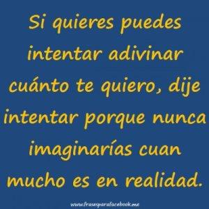 frases_romanticas_cuanto_te_quiero