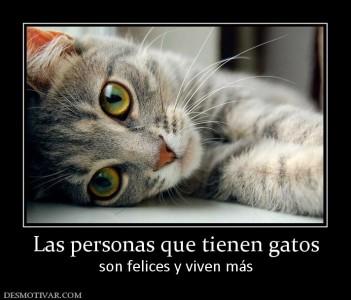 36576_las_personas_que_tienen_gatos