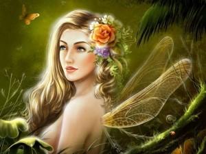 Hada Natural-518324_800