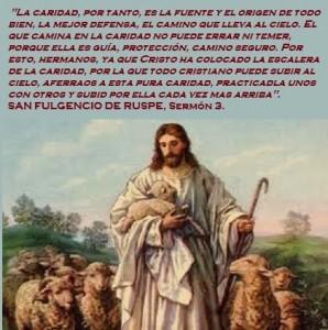 San Fulgencio- Caridad
