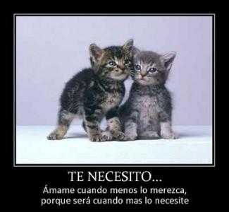 Te-necesito-1