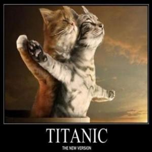 gato-titanic