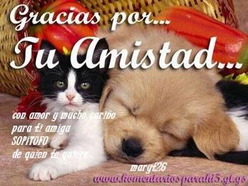 307342_600684761_gracias-por-tu-amistad_H192349_L
