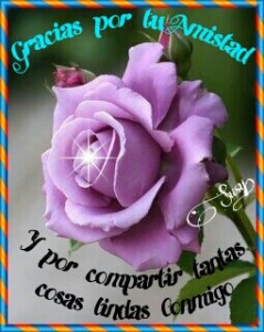 PicsArt_1360299404590