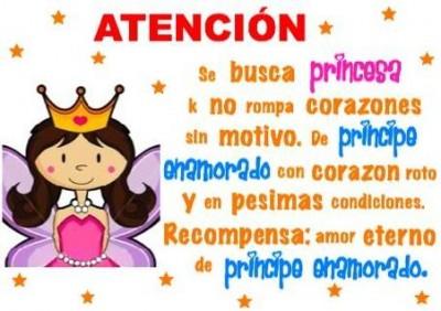 atencion_se_busca_princesa-13806