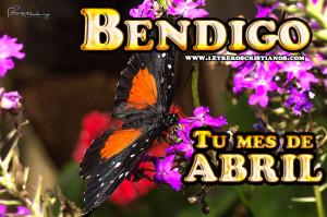 Bendigo-Abril-300x199