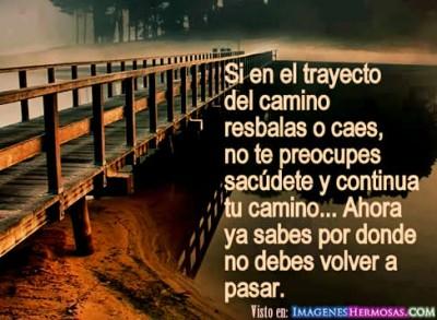 Camino_de_la_vida