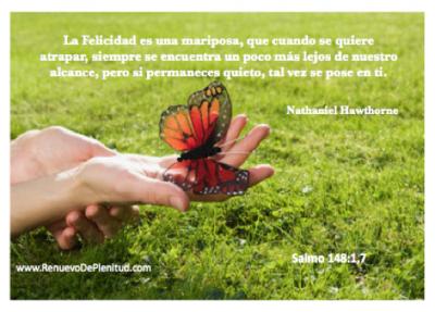 mariposa821